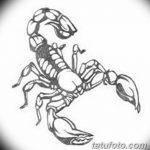 фото эскиз тату скорпион от 24.04.2018 №069 - sketch of a scorpion tattoo - tatufoto.com