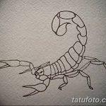 фото эскиз тату скорпион от 24.04.2018 №077 - sketch of a scorpion tattoo - tatufoto.com