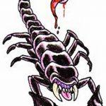фото эскиз тату скорпион от 24.04.2018 №085 - sketch of a scorpion tattoo - tatufoto.com