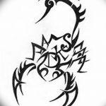 фото эскиз тату скорпион от 24.04.2018 №087 - sketch of a scorpion tattoo - tatufoto.com