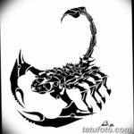 фото эскиз тату скорпион от 24.04.2018 №088 - sketch of a scorpion tattoo - tatufoto.com