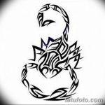 фото эскиз тату скорпион от 24.04.2018 №095 - sketch of a scorpion tattoo - tatufoto.com