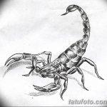 фото эскиз тату скорпион от 24.04.2018 №103 - sketch of a scorpion tattoo - tatufoto.com
