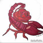 фото эскиз тату скорпион от 24.04.2018 №106 - sketch of a scorpion tattoo - tatufoto.com