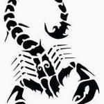 фото эскиз тату скорпион от 24.04.2018 №110 - sketch of a scorpion tattoo - tatufoto.com