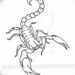 фото эскиз тату скорпион от 24.04.2018 №114 - sketch of a scorpion tattoo - tatufoto.com