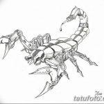фото эскиз тату скорпион от 24.04.2018 №116 - sketch of a scorpion tattoo - tatufoto.com