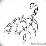 фото эскиз тату скорпион от 24.04.2018 №117 - sketch of a scorpion tattoo - tatufoto.com