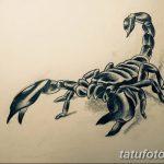 фото эскиз тату скорпион от 24.04.2018 №120 - sketch of a scorpion tattoo - tatufoto.com