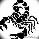 фото эскиз тату скорпион от 24.04.2018 №124 - sketch of a scorpion tattoo - tatufoto.com