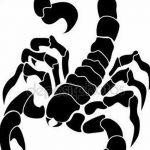 фото эскиз тату скорпион от 24.04.2018 №124 - sketch of a scorpion tattoo - tatufoto.com 34634