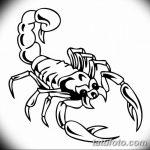 фото эскиз тату скорпион от 24.04.2018 №130 - sketch of a scorpion tattoo - tatufoto.com