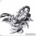 фото эскиз тату скорпион от 24.04.2018 №133 - sketch of a scorpion tattoo - tatufoto.com