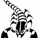 фото эскиз тату скорпион от 24.04.2018 №134 - sketch of a scorpion tattoo - tatufoto.com