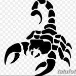 фото эскиз тату скорпион от 24.04.2018 №142 - sketch of a scorpion tattoo - tatufoto.com