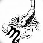 фото эскиз тату скорпион от 24.04.2018 №143 - sketch of a scorpion tattoo - tatufoto.com