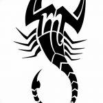 фото эскиз тату скорпион от 24.04.2018 №144 - sketch of a scorpion tattoo - tatufoto.com