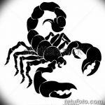 фото эскиз тату скорпион от 24.04.2018 №149 - sketch of a scorpion tattoo - tatufoto.com