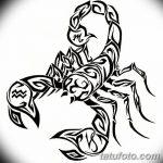 фото эскиз тату скорпион от 24.04.2018 №155 - sketch of a scorpion tattoo - tatufoto.com