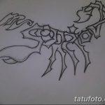 фото эскиз тату скорпион от 24.04.2018 №164 - sketch of a scorpion tattoo - tatufoto.com