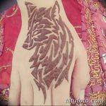 фото Мехенди волка от 05.05.2018 №008 - Mehendi the Wolf - tatufoto.com