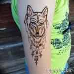 фото Мехенди волка от 05.05.2018 №013 - Mehendi the Wolf - tatufoto.com