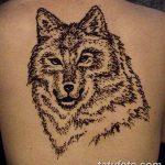 фото Мехенди волка от 05.05.2018 №017 - Mehendi the Wolf - tatufoto.com