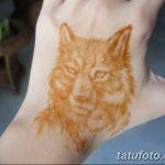 фото Мехенди волка от 05.05.2018 №023 - Mehendi the Wolf - tatufoto.com