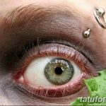 фото пирсинг брови от 06.06.2018 №016 - eyebrow piercing - tatufoto.com