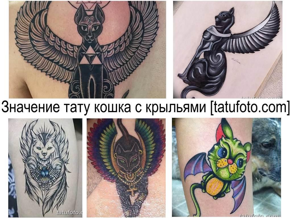 Значение тату кошка с крыльями - коллекция готовых рисунков татуировки на фото