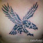 фото Модные тату от 23.06.2018 №093 - Fashionable Tattoos - tatufoto.com
