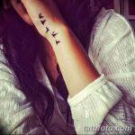 фото Модные тату от 23.06.2018 №120 - Fashionable Tattoos - tatufoto.com