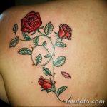 фото Модные тату от 23.06.2018 №456 - Fashionable Tattoos - tatufoto.com
