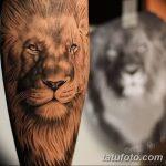 фото Модные тату от 23.06.2018 №492 - Fashionable Tattoos - tatufoto.com