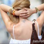 фото Модные тату от 23.06.2018 №524 - Fashionable Tattoos - tatufoto.com