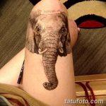 фото Тату на колене от 05.06.2018 №085 - Tattoo on the knee - tatufoto.com