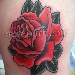 фото Тату на колене от 05.06.2018 №192 - Tattoo on the knee - tatufoto.com