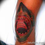 фото Тату на колене от 05.06.2018 №220 - Tattoo on the knee - tatufoto.com