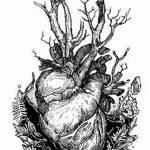 фото Эскизы тату Сердце от 20.06.2018 №117 - Sketches Tattoo Heart - tatufoto.com