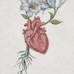 фото Эскизы тату Сердце от 20.06.2018 №151 - Sketches Tattoo Heart - tatufoto.com