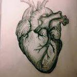 фото Эскизы тату Сердце от 20.06.2018 №171 - Sketches Tattoo Heart - tatufoto.com