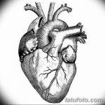 фото Эскизы тату Сердце от 20.06.2018 №251 - Sketches Tattoo Heart - tatufoto.com