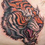 фото татуировка оскал тигра от 01.06.2018 №002 - tiger tattoo - tatufoto.com