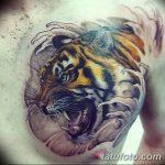фото татуировка оскал тигра от 01.06.2018 №014 - tiger tattoo - tatufoto.com