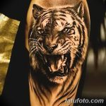 фото татуировка оскал тигра от 01.06.2018 №033 - tiger tattoo - tatufoto.com