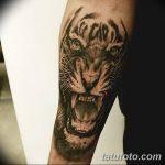 фото татуировка оскал тигра от 01.06.2018 №035 - tiger tattoo - tatufoto.com