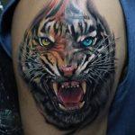 фото татуировка оскал тигра от 01.06.2018 №041 - tiger tattoo - tatufoto.com