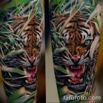фото татуировка оскал тигра от 01.06.2018 №063 - tiger tattoo - tatufoto.com