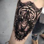 фото татуировка оскал тигра от 01.06.2018 №066 - tiger tattoo - tatufoto.com