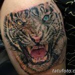 фото татуировка оскал тигра от 01.06.2018 №071 - tiger tattoo - tatufoto.com